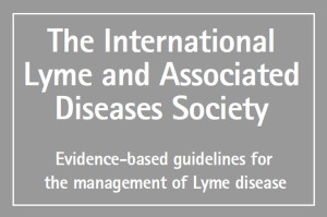 img-guidelines
