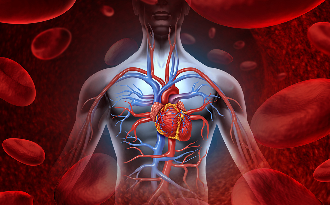 What might sudden cardiac death due to Lyme disease look like?