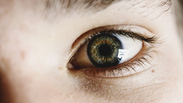 eyes, eye, vision