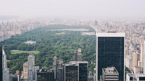 city park, urban, central park, NYC