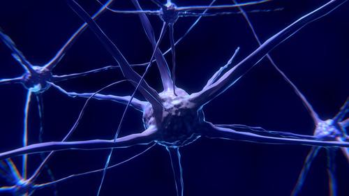 neuronal damage, brain, neurons
